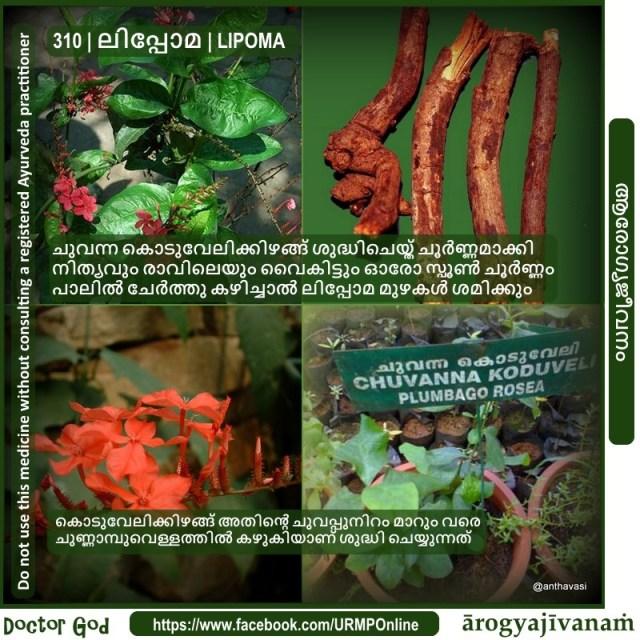 310 | ലിപ്പോമ | LIPOMA